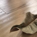 Il parquet rappresenta una scelta ecosostenibile: ecco perché
